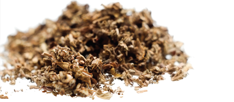 Effects Of Synthetic Cannabinoid Use Dimensions Of Dental Hygiene