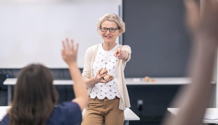 A mature female doctor is holding a model of the brain. The woman is presenting a lecture at a medical training course.