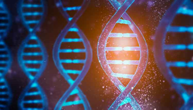 Glowing and shining DNA strands double helix close-up. Medical, biology, microbiology, genetics 3D rendering illustration concept.