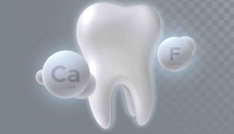 3d tooth with Ca and F symbols